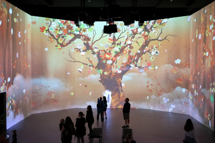 Artechouse's Spirit of Autumn:  Review + Video