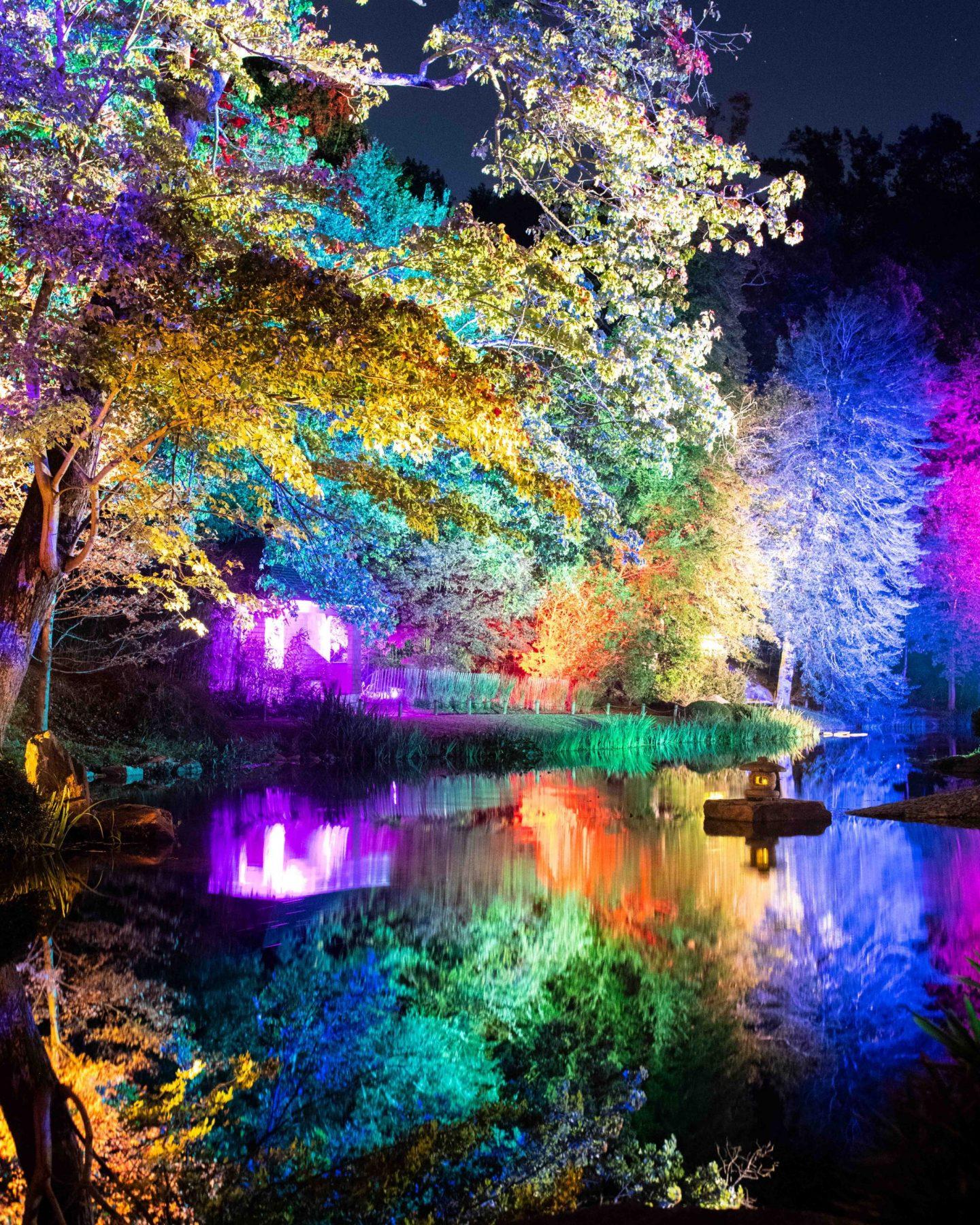 light show maymont