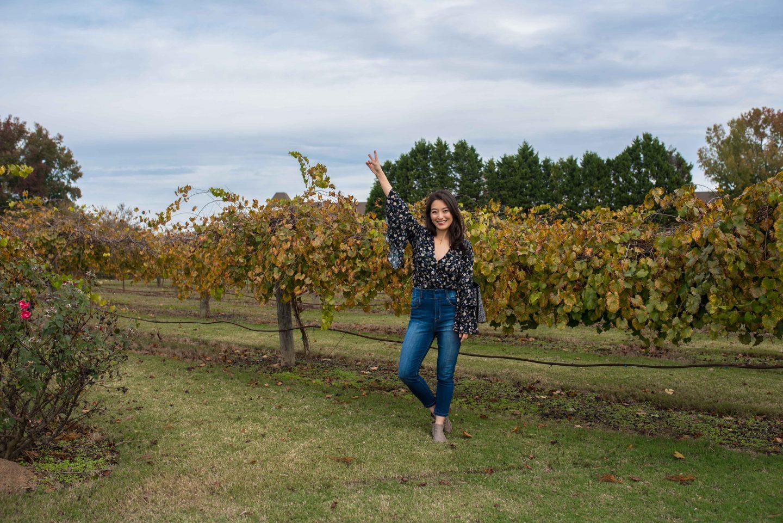 Chateau Elan vineyards