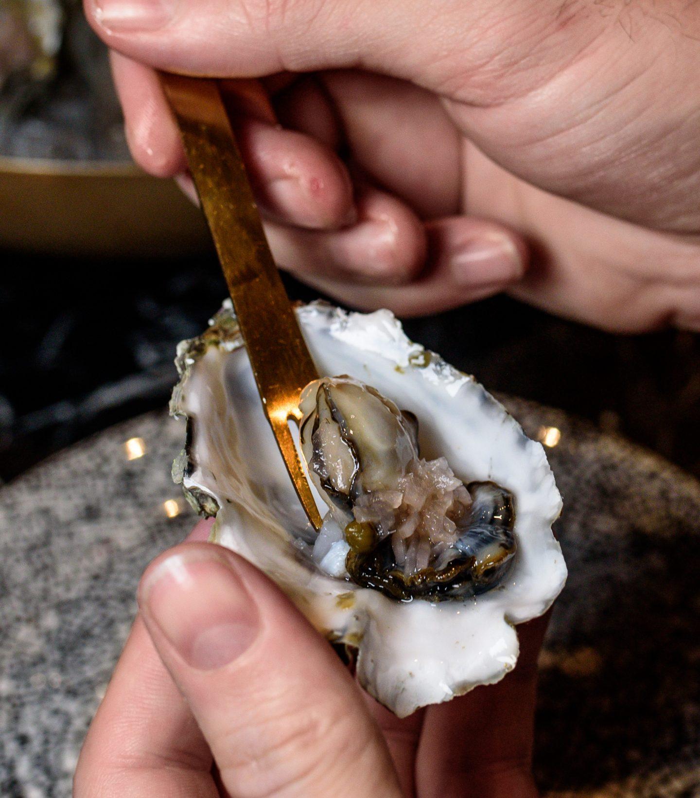 the wayward oysters